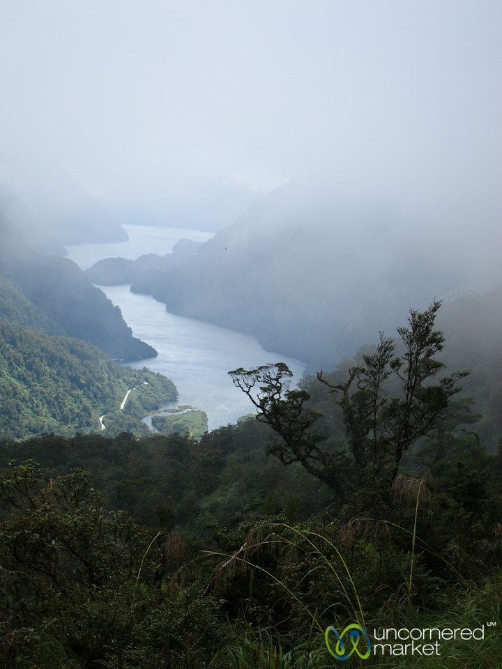 Doubtful Sound - South Island, New Zealand