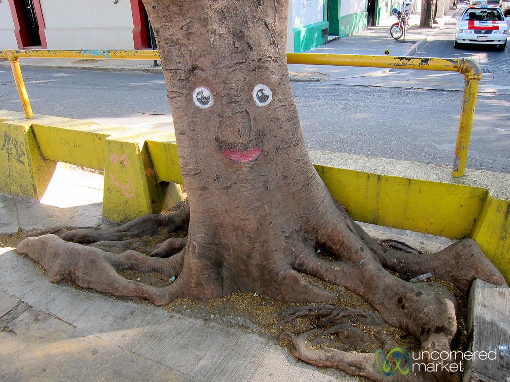 Happy Tree - Oaxaca, Mexico