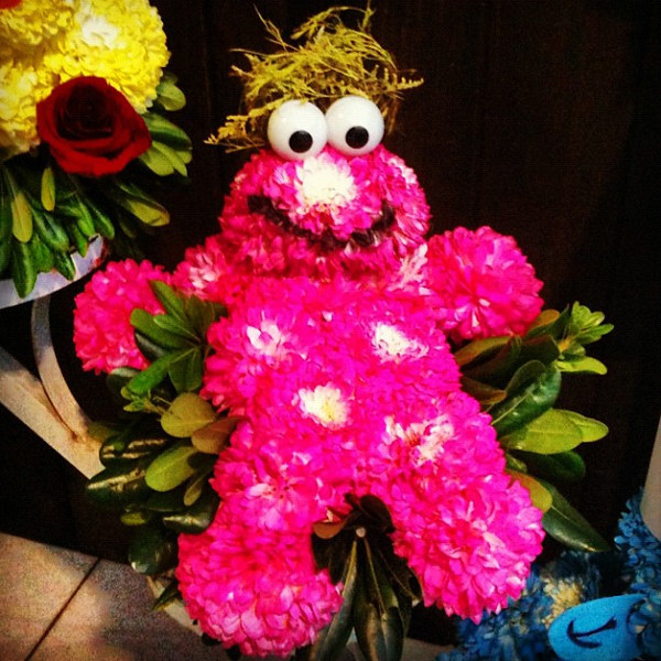 Muppet flowers for Valentine's Day. #oaxaca #mexico #vday