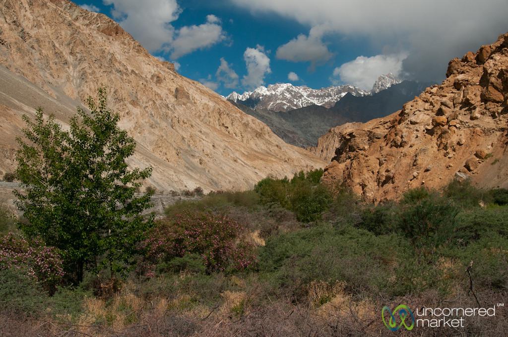 Red Rocks, Snow Capped Mountains - Markha Valley Trek, Ladakh