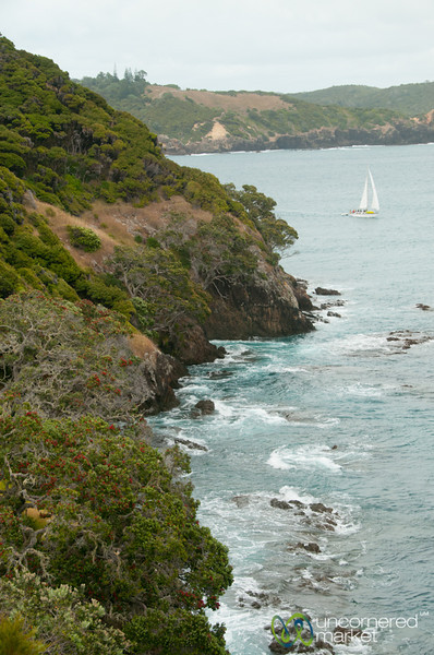 Sailing Around the Bay of Islands - Northland, New Zealand