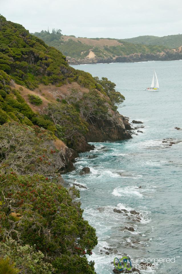 Sailing Around the Bay of Islands - Northland, New Zealand
