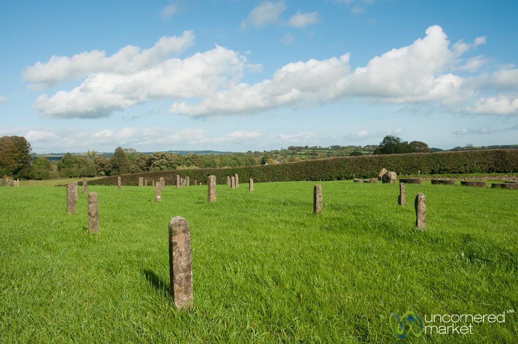 Newgrange Fields - Ireland