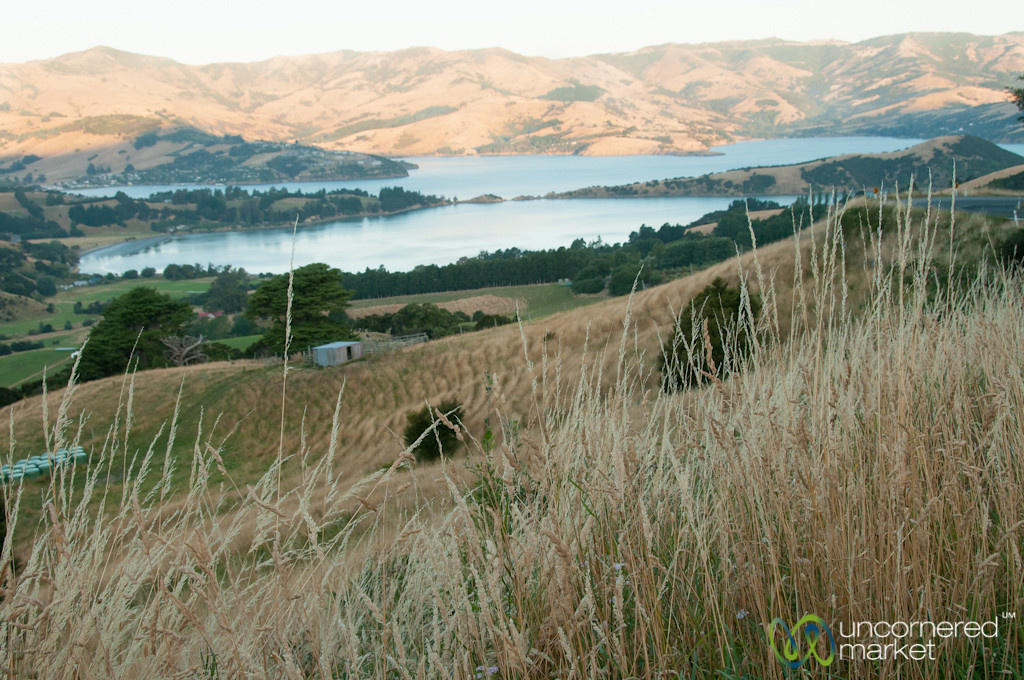 View of Glen Bay above Akaroa, New Zealand