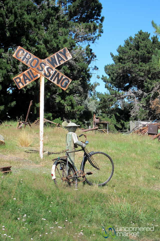 Biking Along Rail Trail - Central Otago, New Zealand
