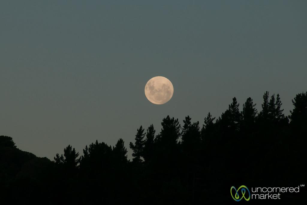 Full Moon at Lochmara Lodge - New Zealand