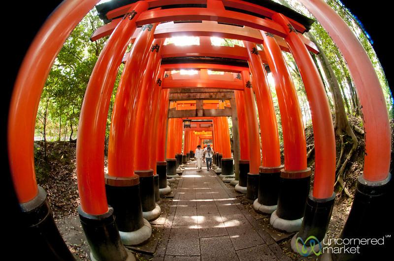 Torii (Gates) at Fushimi Inari Shrine - Kyoto, Japan