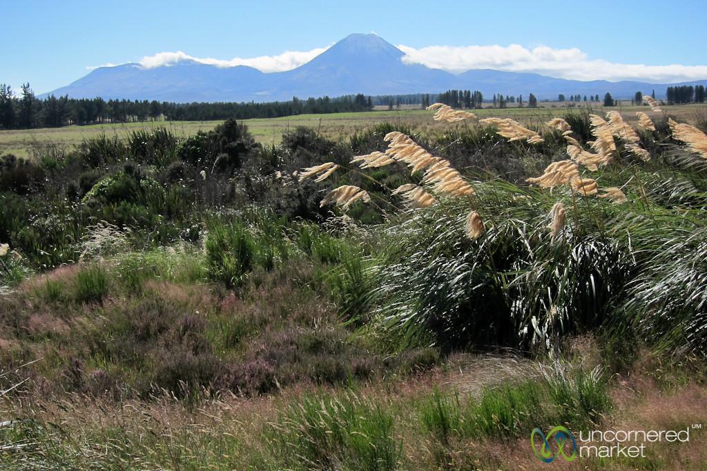 Getting Close to Tongariro - New Zealand