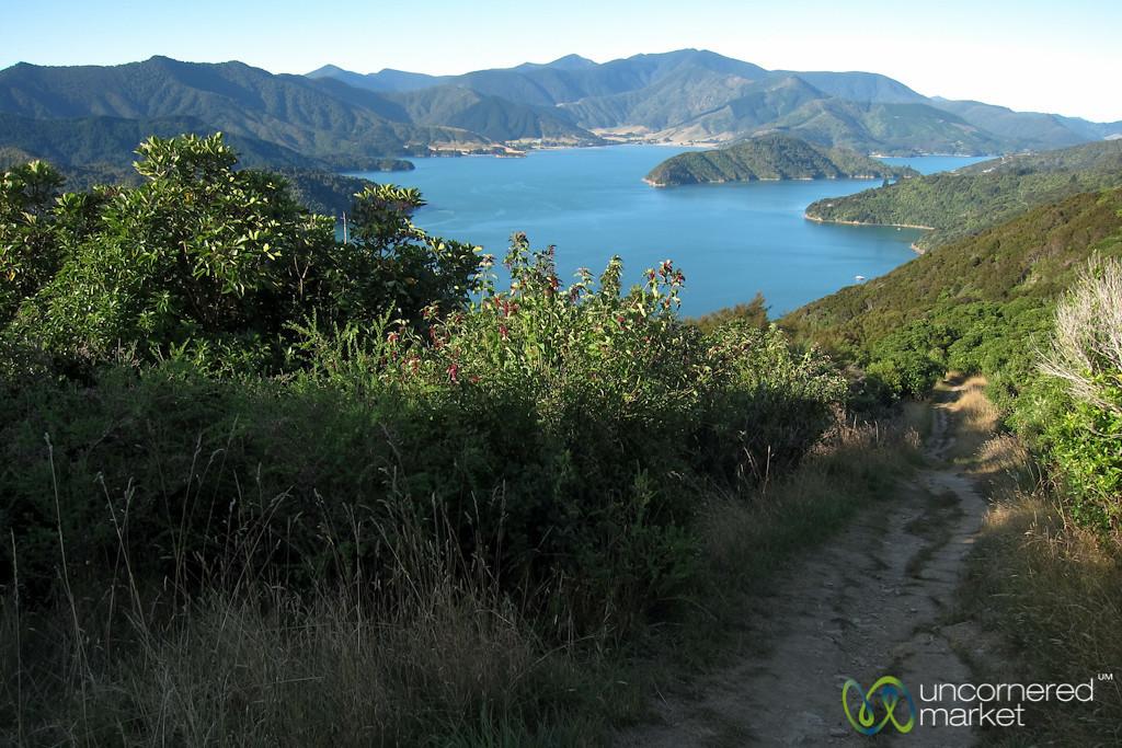 Queen Charlotte Track - New Zealand