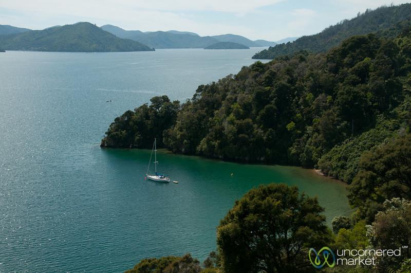 Queen Charlotte Sound Vistas - Marlborough, New Zealand