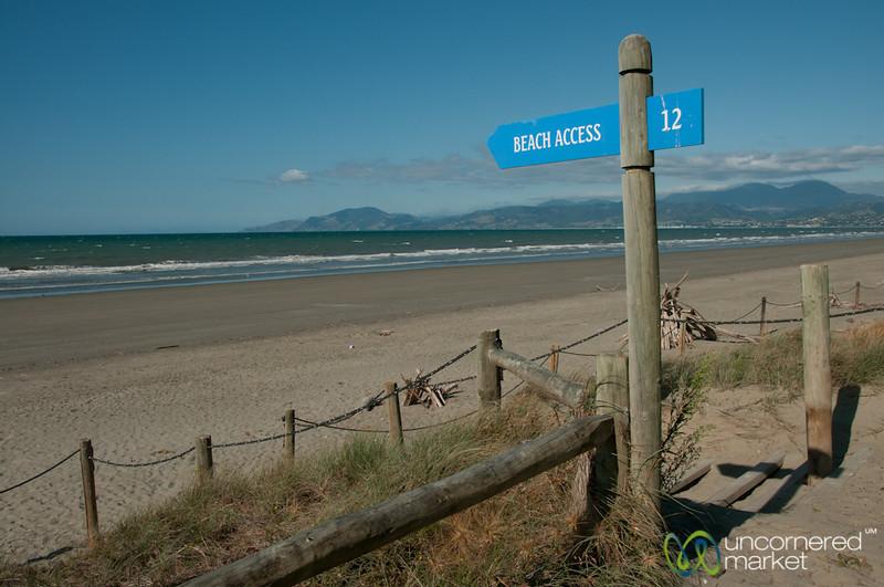 Beach Access at Rabbit Island - Nelson, New Zealand