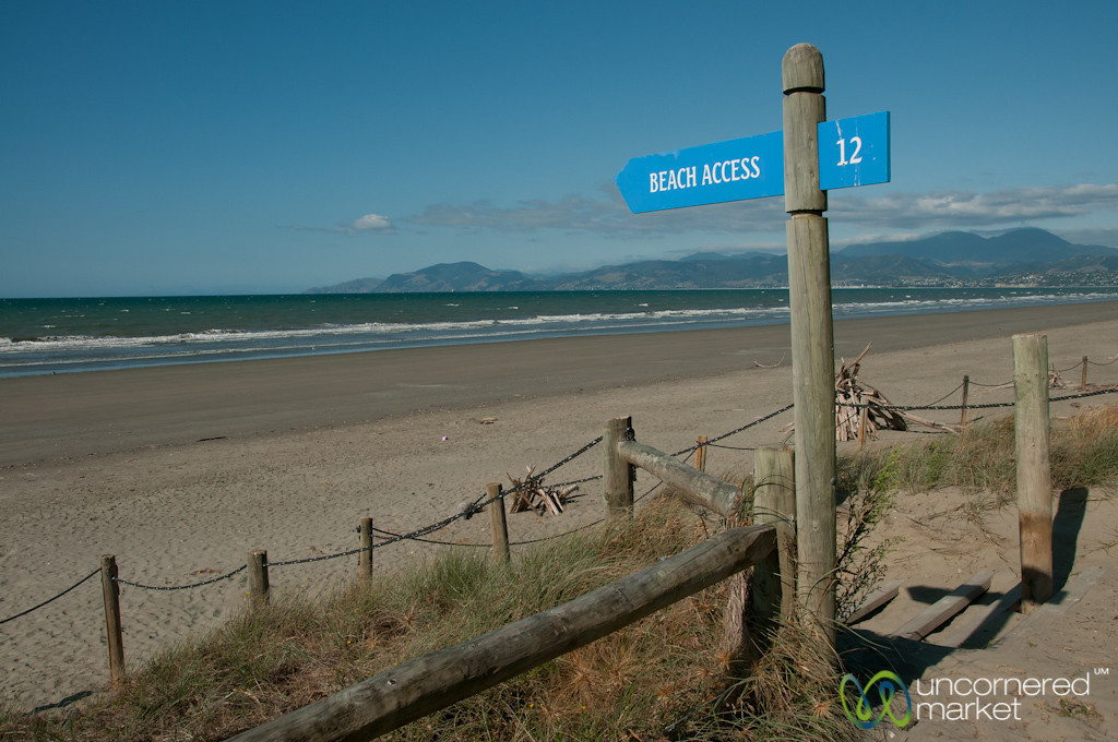 Beach Access at Rabbit Island - Nelson, New Zealand