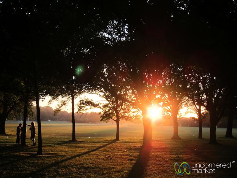 Christchurch Park at Sunset - New Zealand