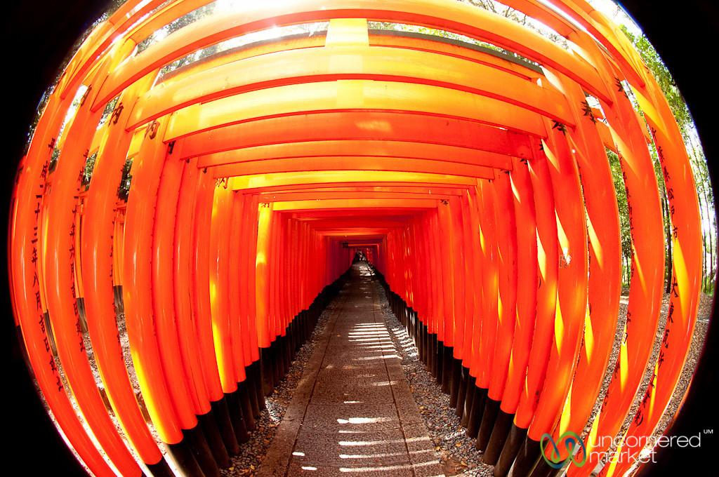 Torii (Gates) of Fushimi Inari Shrine - Kyoto, Japan