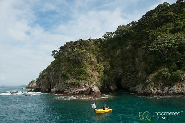 Bay of Islands, Morning Snorkeling - Northland, New Zealand