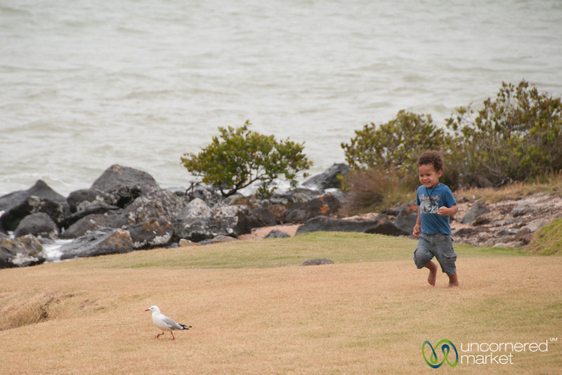 Kid Chasing Pigeon, Universay Fun - Waitangi Treaty Grounds, New Zealand