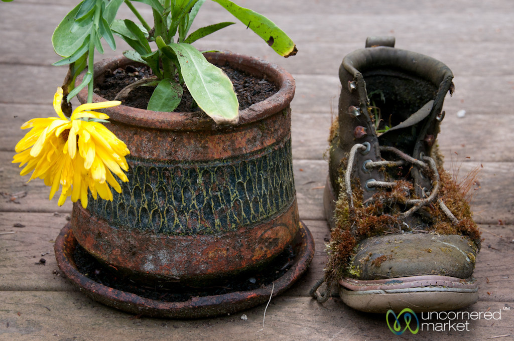 Boot and Flower Pot - Bainbridge Island, Seattle