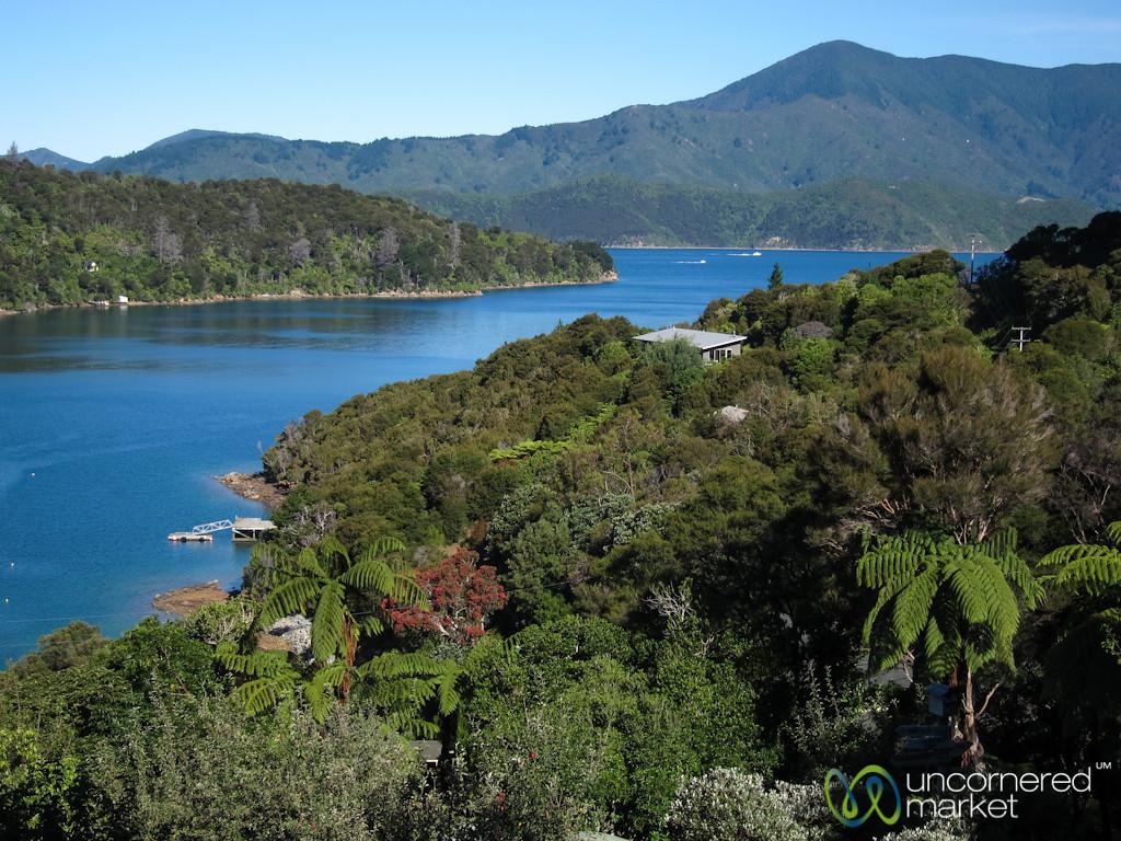 Queen Charlotte Trail View - Lochmara Lodge, New Zealand