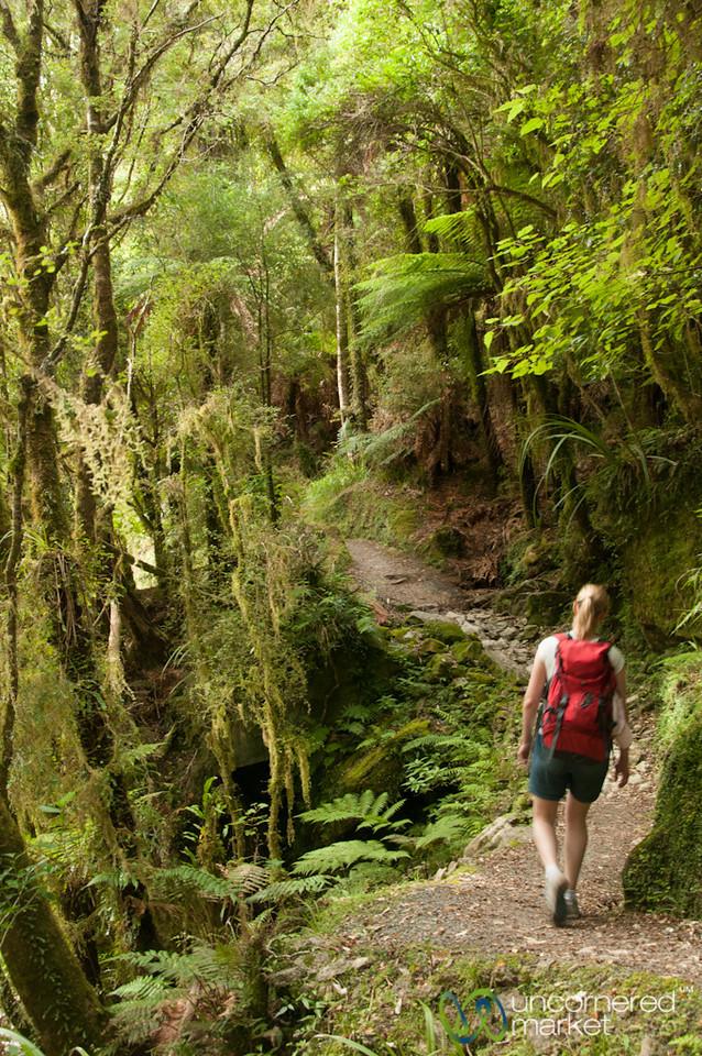 Trekking at Punaikaiki - South Island, New Zealand