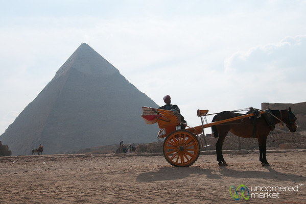 Horse and Carriage at Great Pyramids of Giza - Egypt