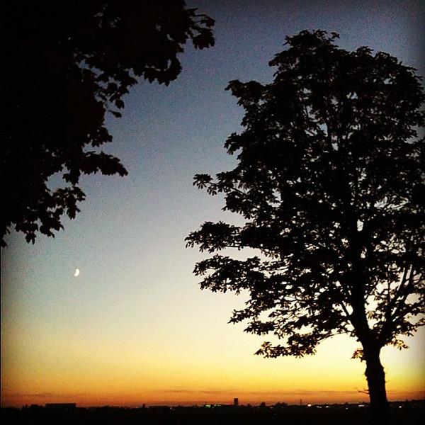 Closing out the week with an evening run at Tempelhof Park. Nice. #Berlin
