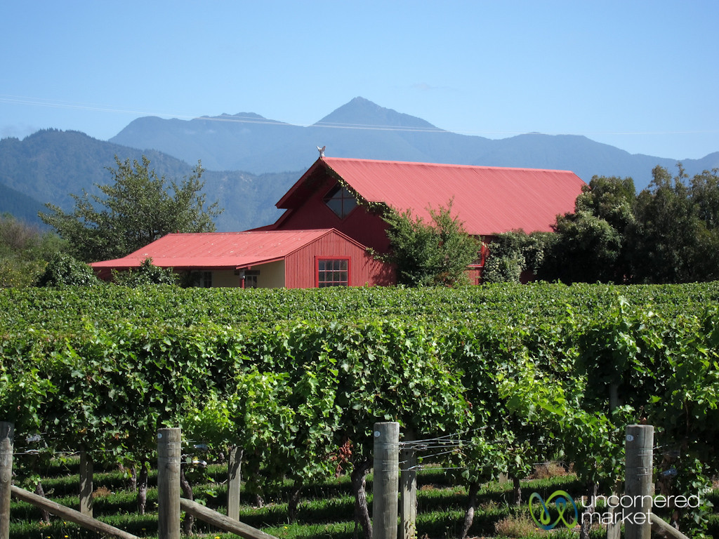 Marlborough Winery - New Zealand