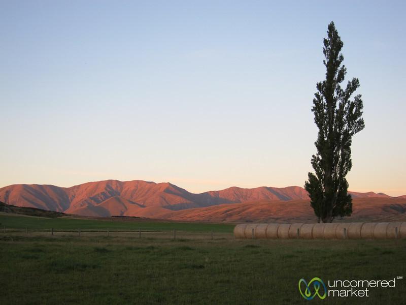 Central Otago Farmlands - South Island, New Zealand