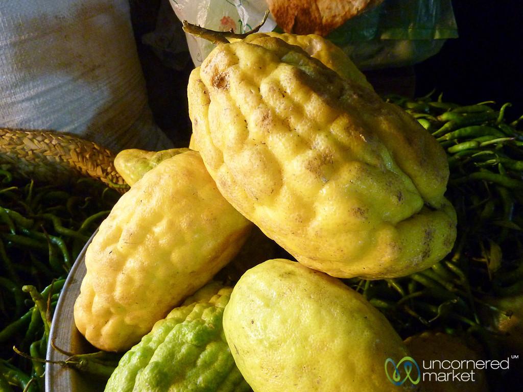 Bergamon Lemon in Rasht, Iran