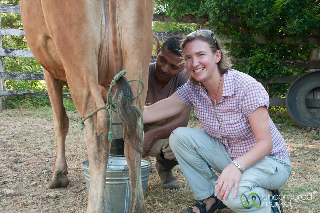 Audrey Milks a Cow - Morgan's Rock, Nicaragua