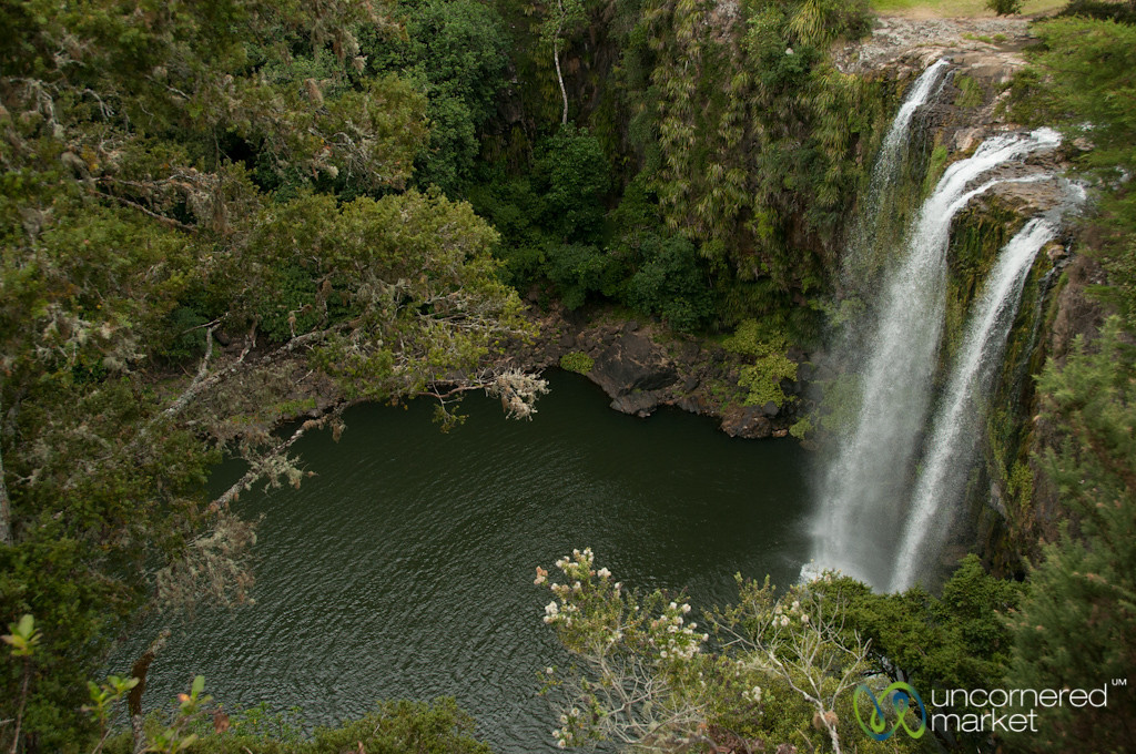 Whangarei Falls from Above - Northland, New Zealand