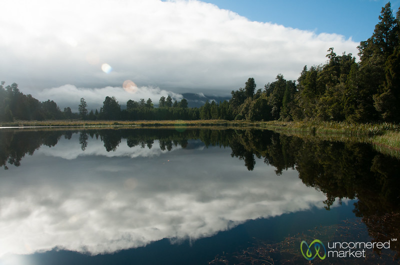 Reflections in the Water near Franz Josef - New Zealand