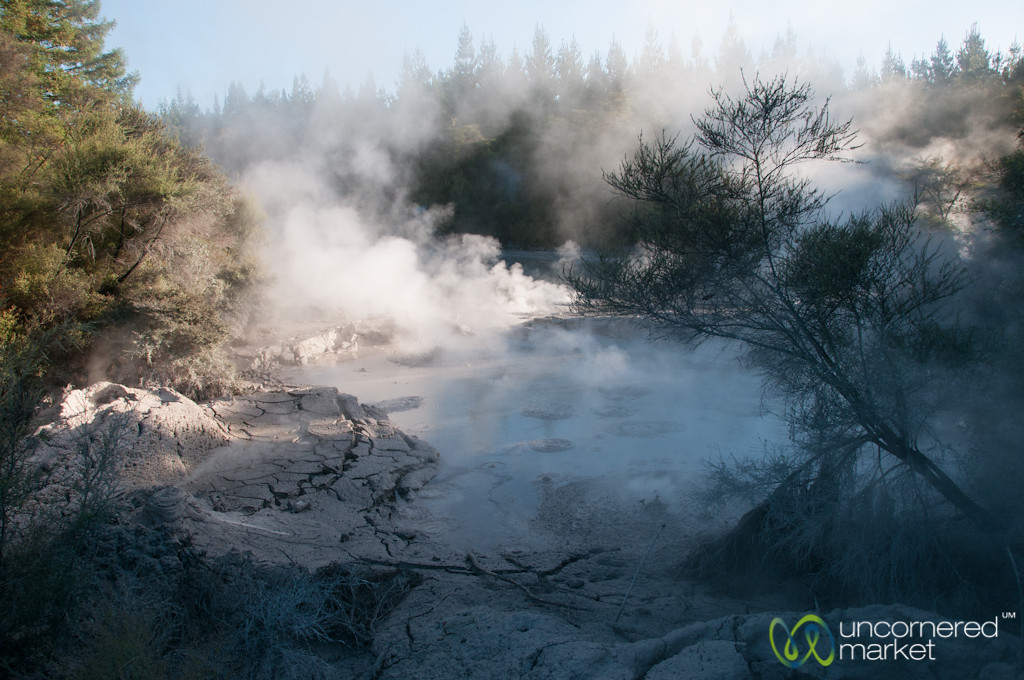 Bubbling Mud of Waiotapu - Rotorua, New Zealand