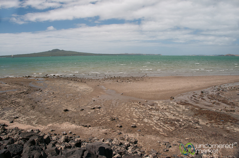 Mission Bay Coastline - Auckland, New Zealand