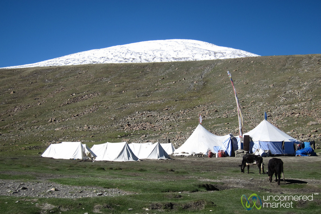 Nimiling Campsite - Markha Valley Trek, Ladakh, India