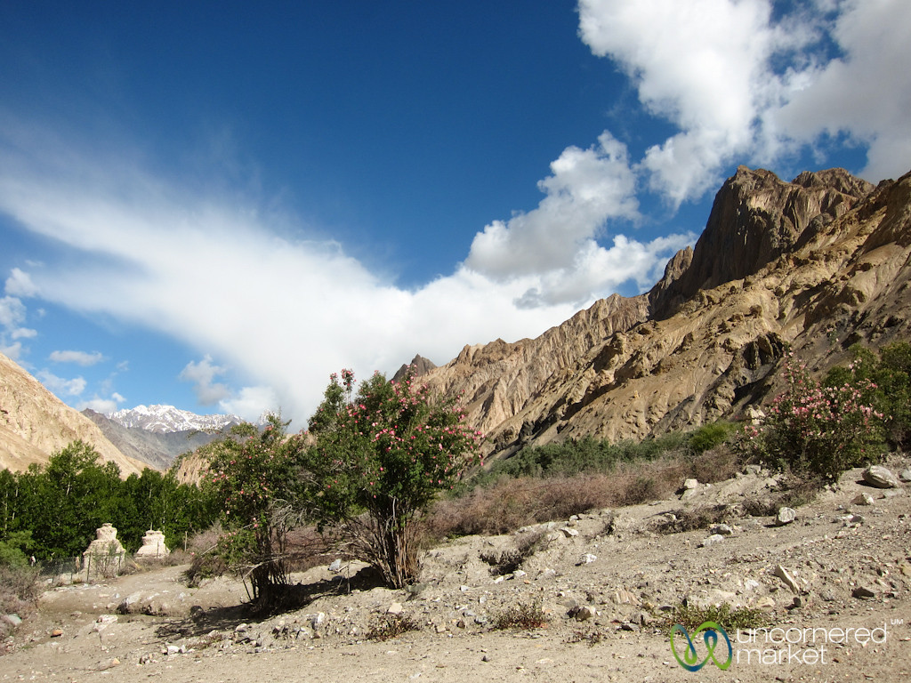 Mountains, Chortens and Valleys - Day 3 of Markha Valley Trek, Ladakh