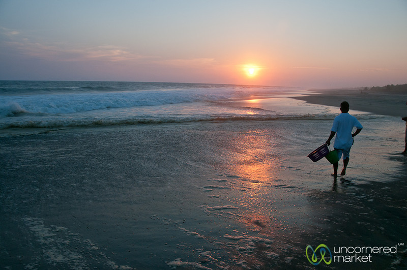 End of Turtle Liberation Event - Playa La Ventanilla, Mexico