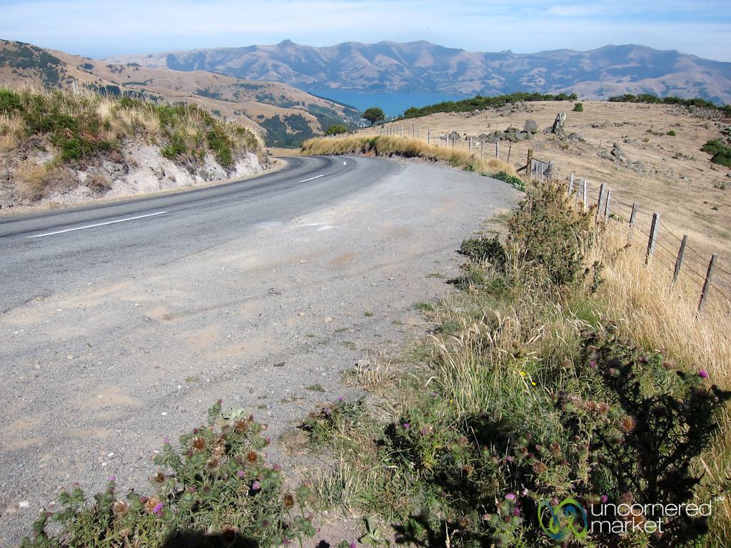 Road Trip Near Akaroa, New Zealand