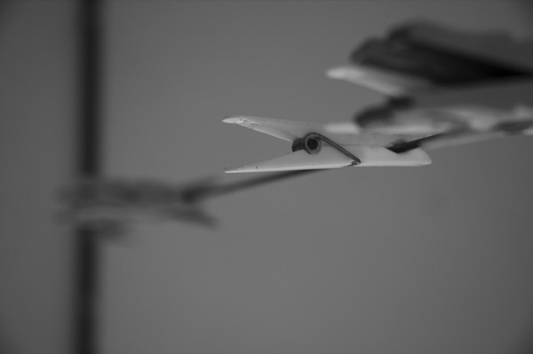 Clothespin in Black and White