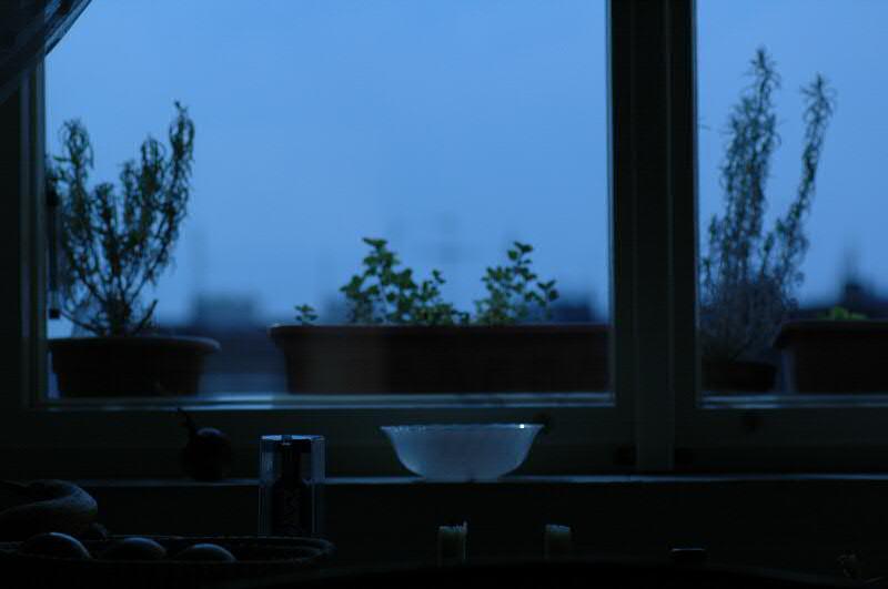 Kitchen Melancholy
