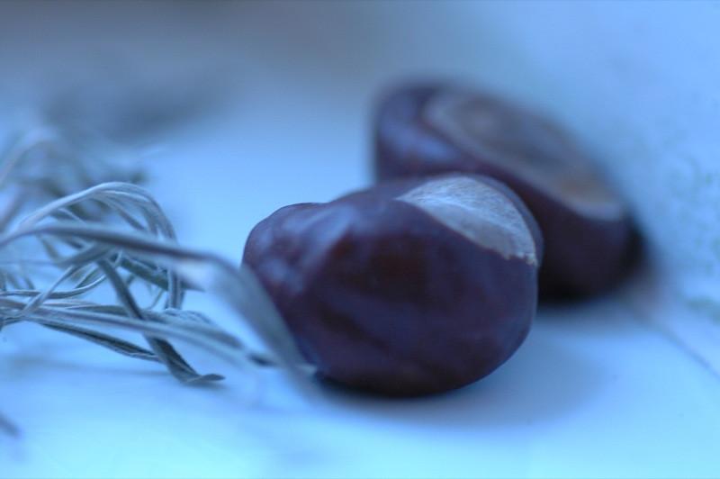 Chestnuts - Prague, Czech Republic
