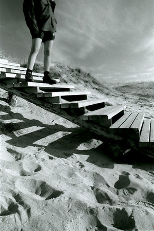 Ladder and Sand Dunes  - Curonian Spit, Lithuania