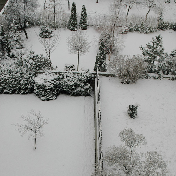 Winter - Prague, Czech Republic