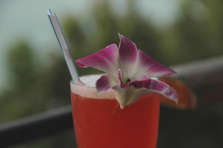 Cocktail - Koh Pha Ngan, Thailand