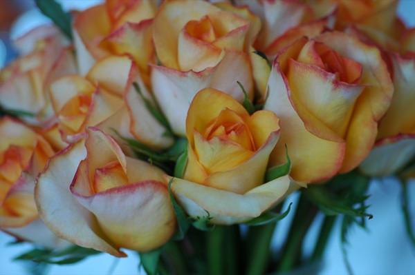 Wedding Bouquet of Roses - Trencin, Slovakia
