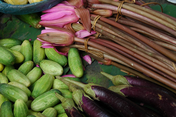 Lotus Flowers, Eggplant and Cucumbers - Battambang, Cambodia