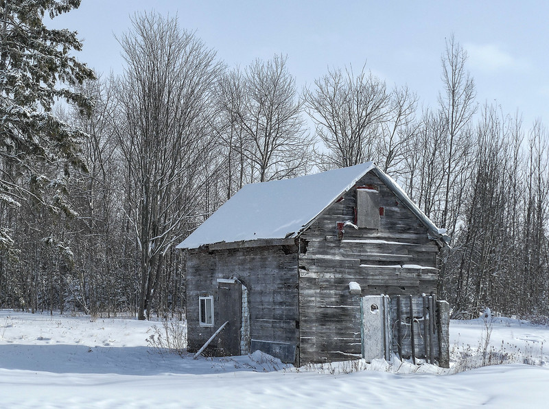"""""""A Renovator's Delight,""""  this dream cottage can likely be bought for a small fortune!"""