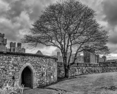 Beyond the castle walls - 2016 Christopher Buff, www.Aviationbuff.com