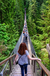 Capilano Suspension Bridge, Vancouver, BC - 2018 Christopher Buff, wwwAviationbuff.com