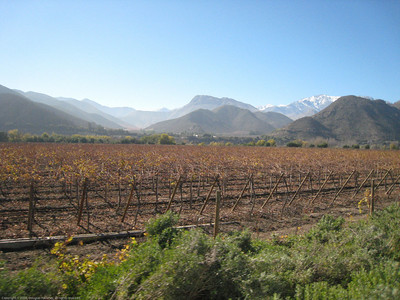 Roadside view. Elqui Valley, Chile.