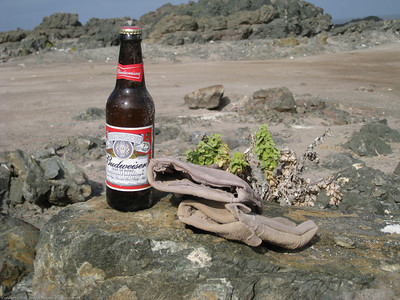 Full bottle of Bud and a pair of work gloves I found while picking up trash. I hoped the locals got the idea. Camp site. North of Taltal, Chile.